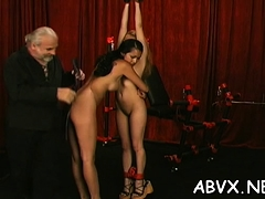 Dilettante Babe With Nice Assets Xxx Servitude