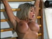 Bodybuilding milfs get pussy friendly at  ...